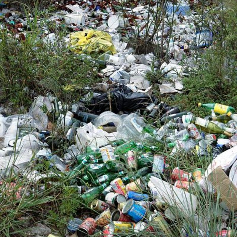 plastic pollution in sanskrit