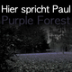 Hsp purple forest flyer2