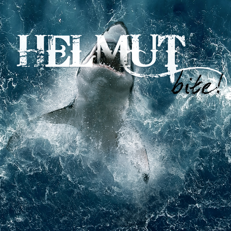 Helmut cover alone