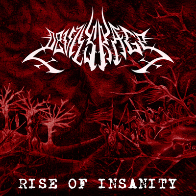 2014 riseofinsanity cover front 1024