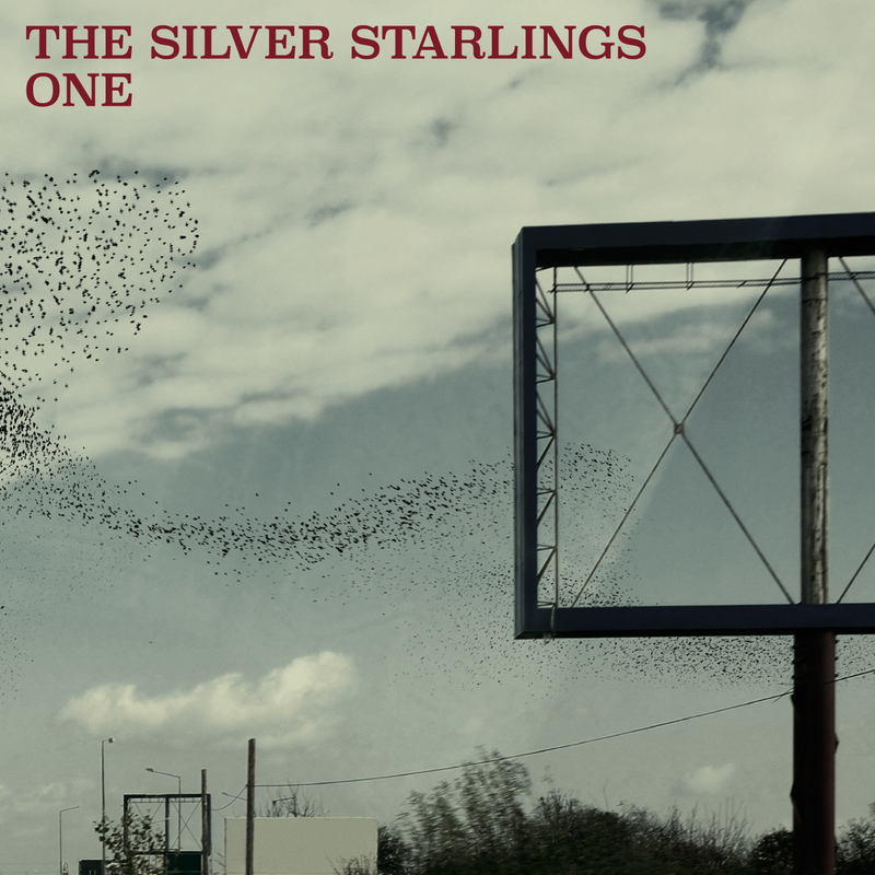 The silver starlings one cover 1400