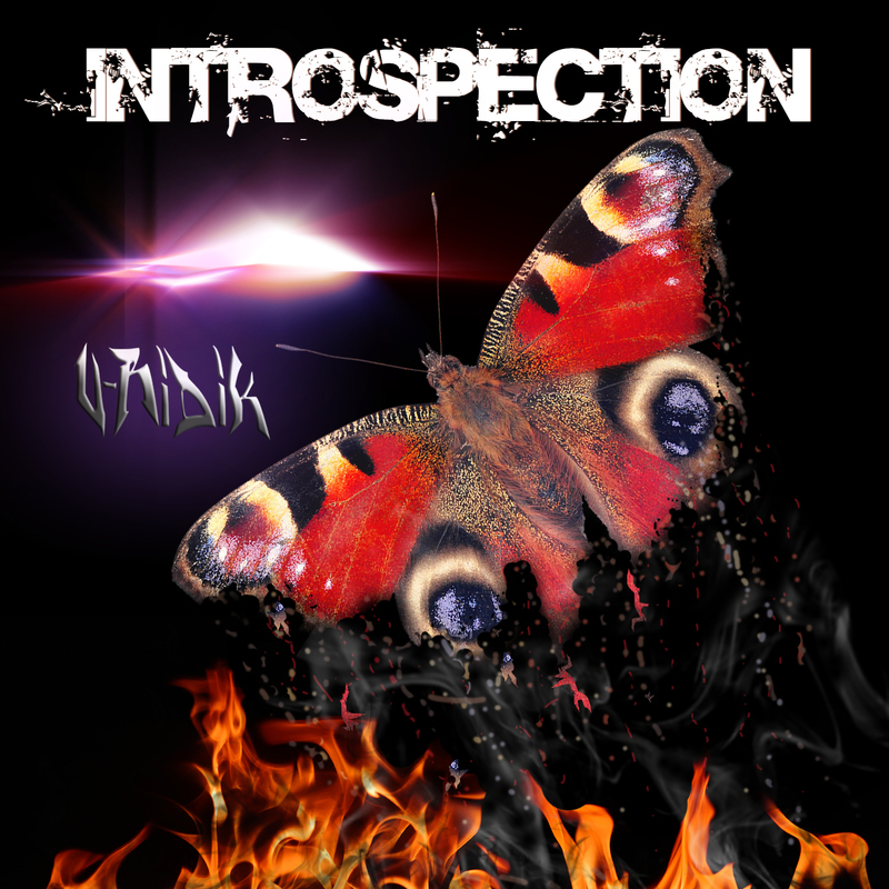 Introspectionrectofinal